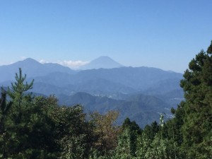 道中からの富士山