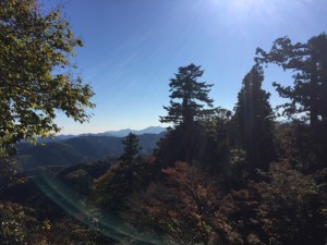 下山時の景色